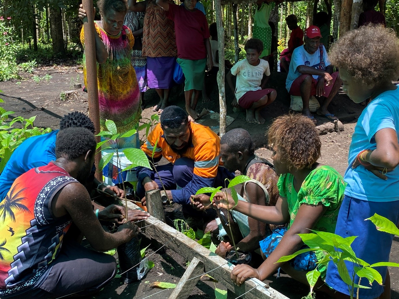 A taste of Tabar - New Ireland's first chocolate